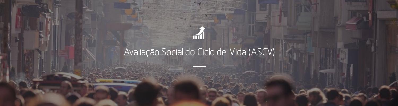 Avaliação Social do Ciclo de Vida (ASCV)
