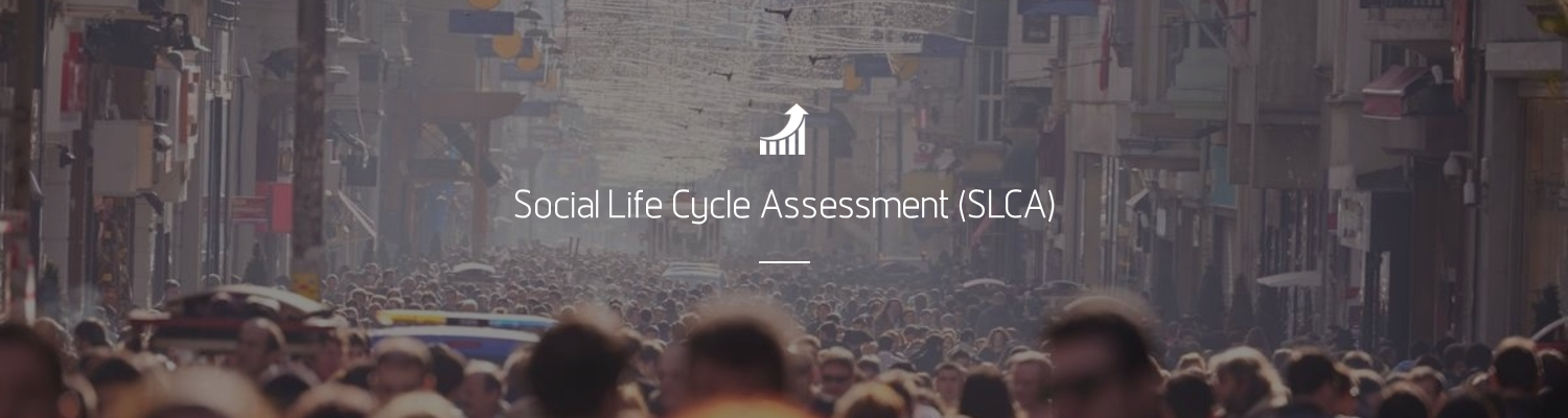 Social Life Cycle Assessment (S-LCA)